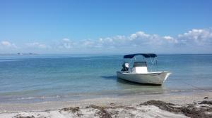 Boat at Egmont